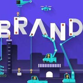 Customer Base & Brand Identity